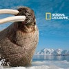 Nat Geo Live! Comes To The Big Apple
